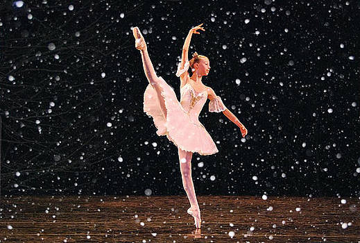 Snow Princess Ballerina by Sandi OReilly