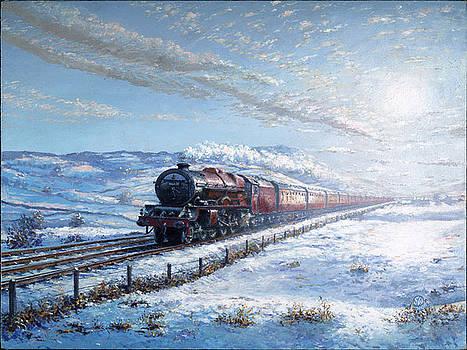 Snow Princess by Stephen Warnes
