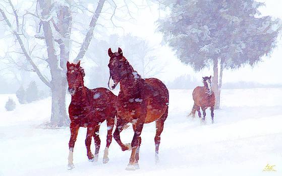 Snow Run by Sam Davis Johnson