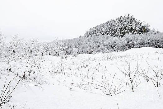 Larry Ricker - Snow Scene
