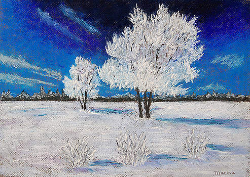 Snow Scene by Marina Garrison