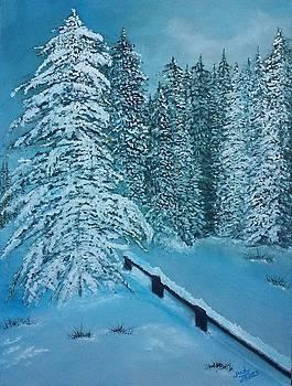 Snow Scenery by Judy Jones