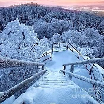 Snow Scenes by Alejandra Flores