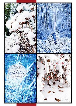 Snow Season by Lorna Rande