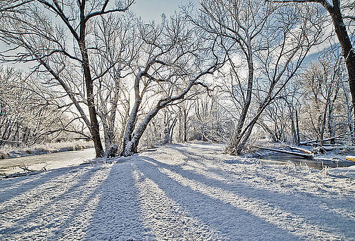 James Steele - Snow Shadows