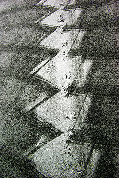 Snow Shovelling Patterns by Paul Wash