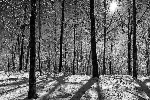Snow, Sun and Shadow by Chris Buff