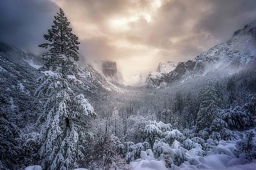Snow Swept by Nicki Frates