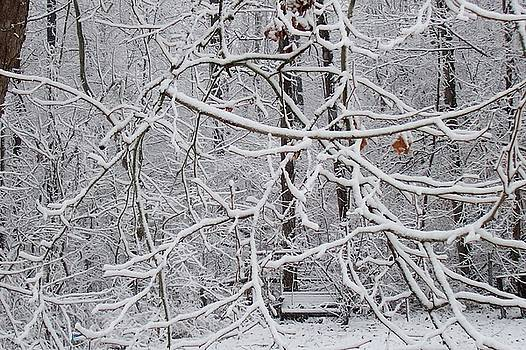 Snow swing by Karen Phillips
