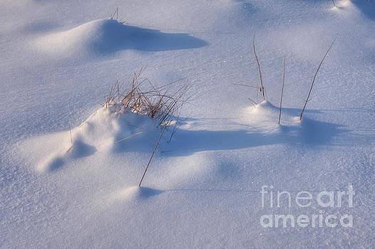 Snow  by Veikko Suikkanen