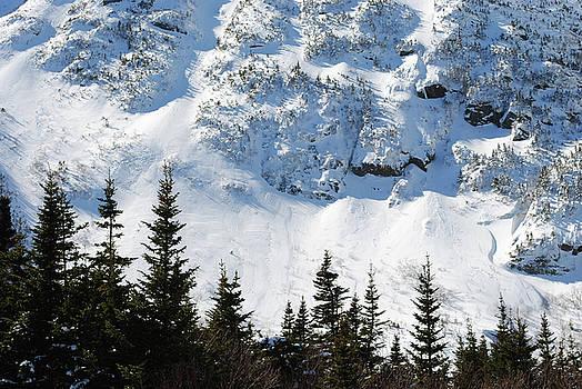 Snow Wall by Jessica Fligg