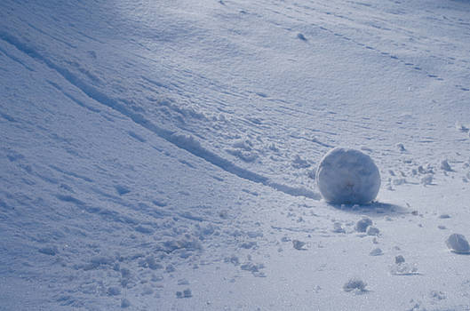 Snowball by Juliana Conley
