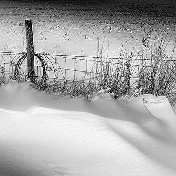 Snowbound by Gary Harris