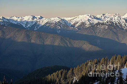 Snowcapped Olympic Mountains in Morning Light in Washington by Brandon Alms