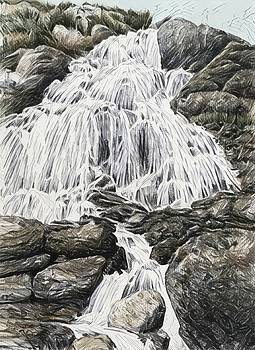 Snowdonia waterfall by Alwyn Dempster Jones