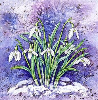 Snowdrops by Lynne Henderson