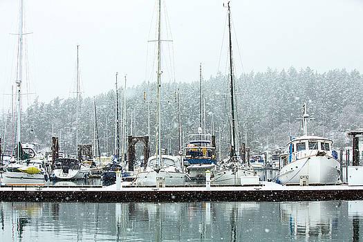 Snowfall by Bob Stevens
