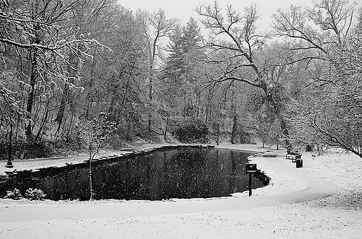 Snowfall in Lincoln Park by Sue Houston