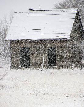 Snowfall by Nadine Berg