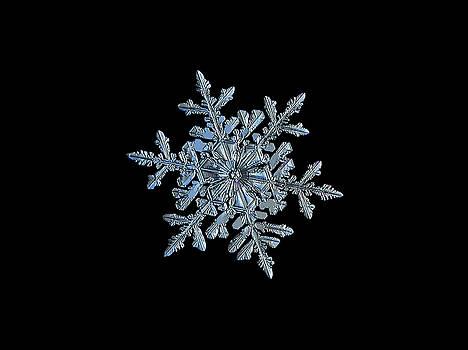 Snowflake 2018-02-21 n1 black by Alexey Kljatov