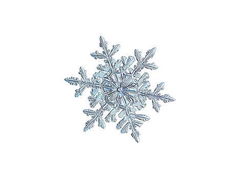Snowflake 2018-02-21 n1 white by Alexey Kljatov