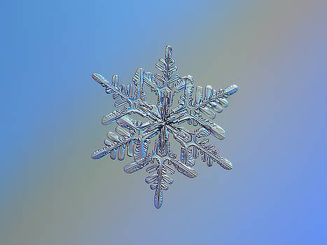 Snowflake macro photo - 13 February 2017 - 1 by Alexey Kljatov