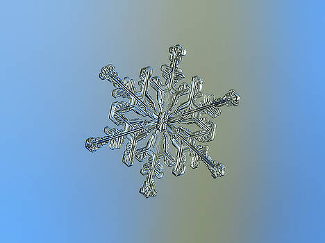 Snowflake macro photo - 13 February 2017 - 2 by Alexey Kljatov