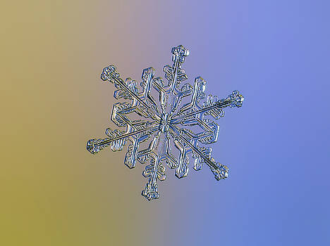 Snowflake macro photo - 13 February 2017 - 2 alt by Alexey Kljatov