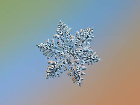 Snowflake macro photo - 13 February 2017 - 5 by Alexey Kljatov