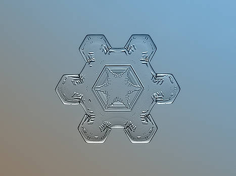 Snowflake macro - Snow flower by Alexey Kljatov