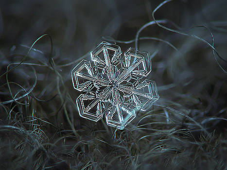 Snowflake photo - Alcor by Alexey Kljatov