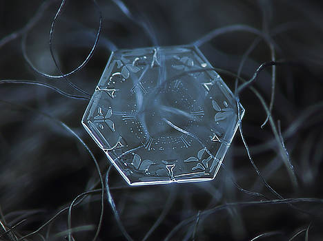 Snowflake photo - Alien's data disk by Alexey Kljatov