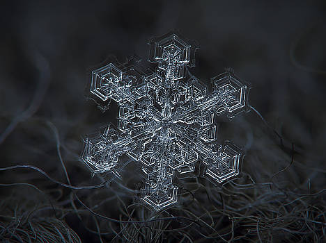 Snowflake photo - Complicated thing by Alexey Kljatov