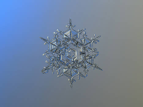 Snowflake photo - Crystal of chaos and order by Alexey Kljatov