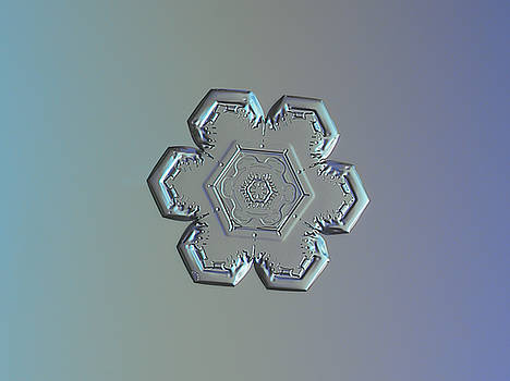 Snowflake photo - Flower within a flower by Alexey Kljatov