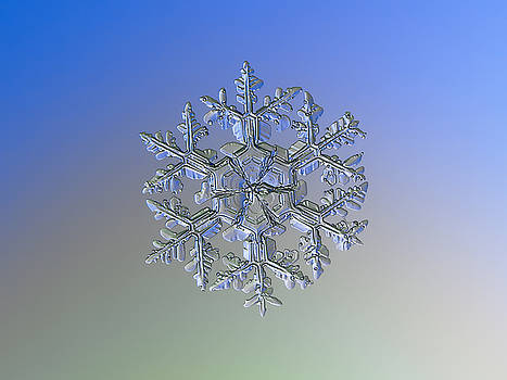 Snowflake photo - Gardener's dream alternate by Alexey Kljatov