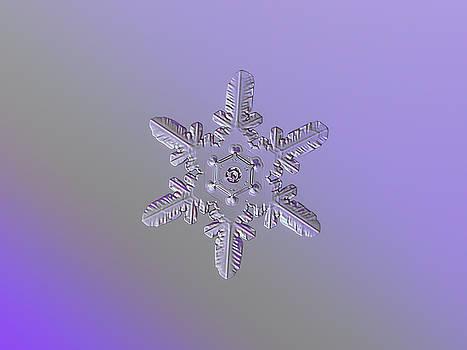 Snowflake photo - Heart-powered star by Alexey Kljatov