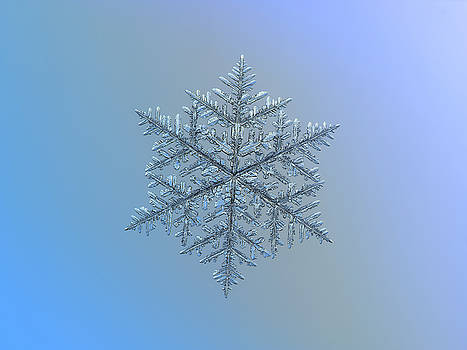 Snowflake photo - Majestic crystal by Alexey Kljatov