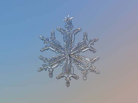 Snowflake photo - Silver plume by Alexey Kljatov