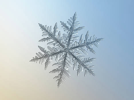 Snowflake photo - Silverware by Alexey Kljatov