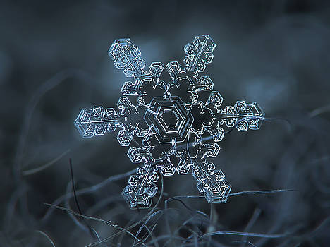 Snowflake photo - Slight asymmetry by Alexey Kljatov