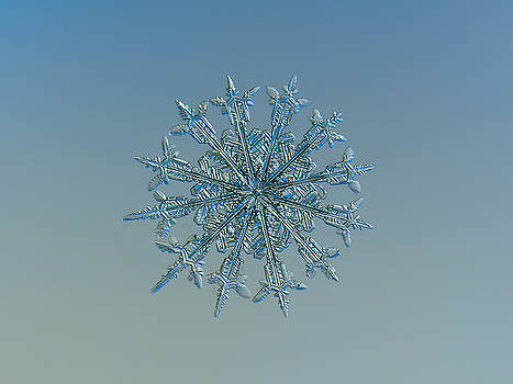 Snowflake photo - Twelve months by Alexey Kljatov