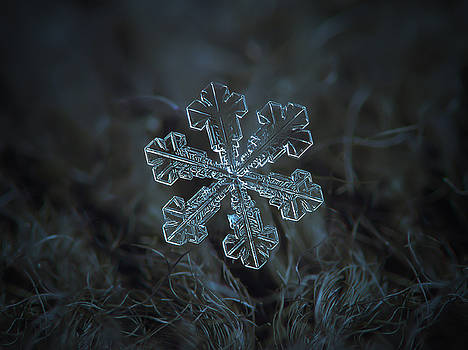 Snowflake photo - Vega by Alexey Kljatov