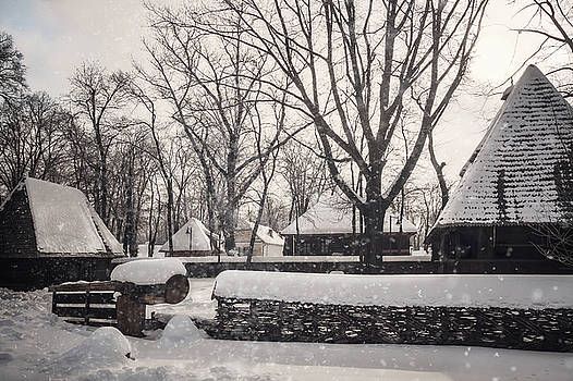 Snowing over a traditional homestead at Village Museum in Bucharest by Daniela Constantinescu