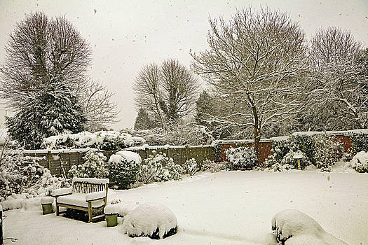 Snowing  by Tony Murtagh