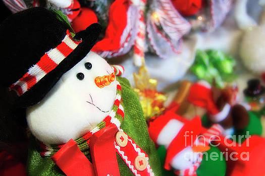 Jill Lang - Snowman for Christmas