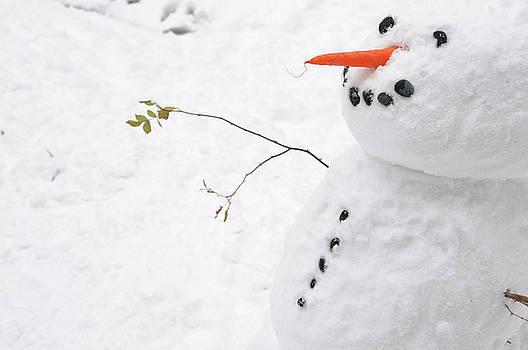 Snowman by Jeremy Voisey