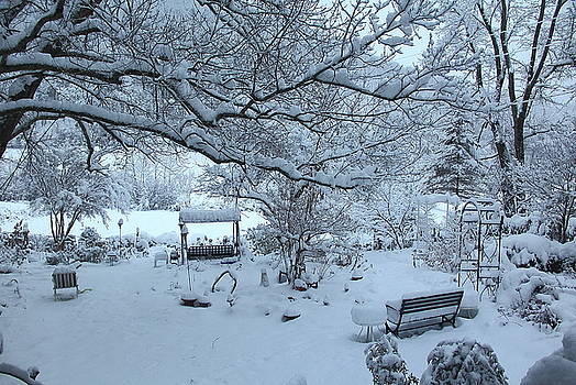 Allen Nice-Webb - Snowplosion