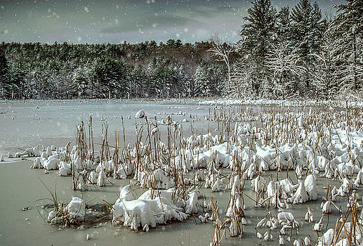 Snowscape by Gary Shepard