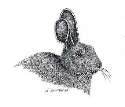Lee Pantas - Snowshoe Hare